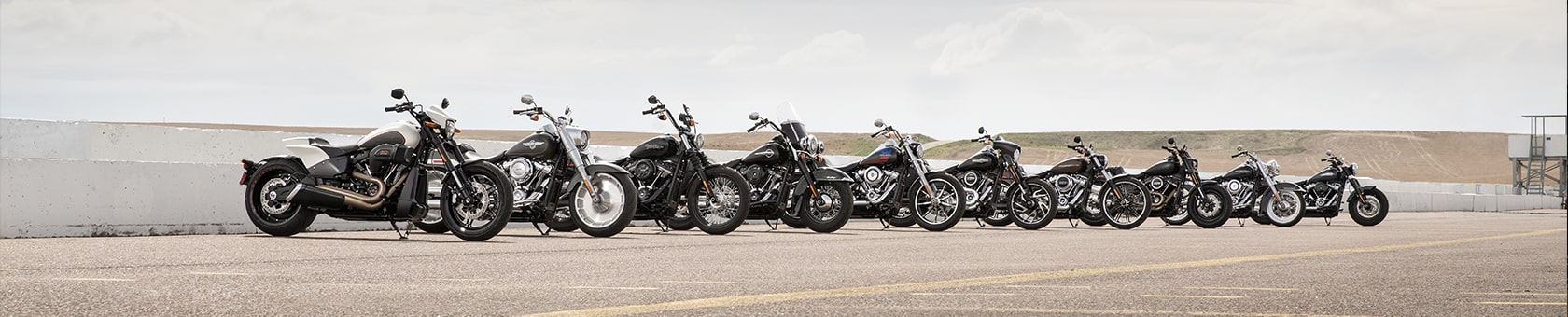 Image of 2019 line-up of Harley Motorcycles